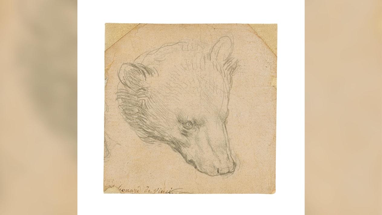 Medvjeđa glava/Foto: Aukcijska kuća Christie's